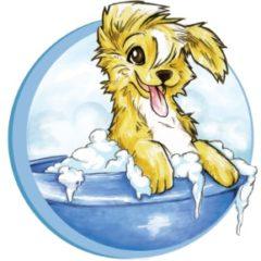 Kouaf'Toutou – Toilettage canin et félin à domicile dans le 47